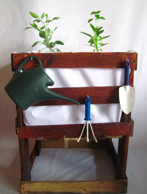 Un llamado a los Jardineros Urbanos! Gardening Networking!