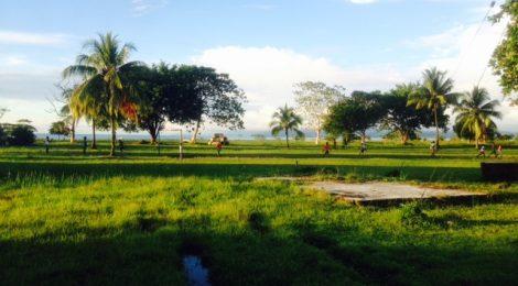 Hacia el Litoral - el suelo del Chocó
