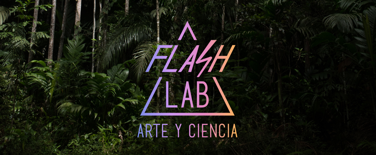 Flash LAB cover